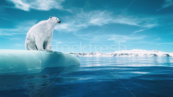 Orso polare pezzo ghiacciaio rendering 3d illustrazione acqua Foto d'archivio © orla