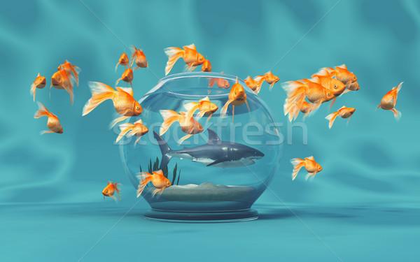 Büyük köpekbalığı çanak altın 3d render örnek Stok fotoğraf © orla