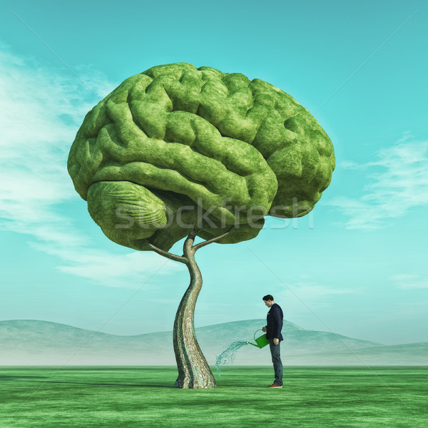 Man squirting a big tree shaped human brain Stock photo © orla
