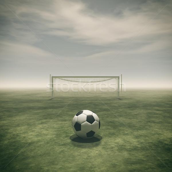 Soccer ball on a green grass  Stock photo © orla