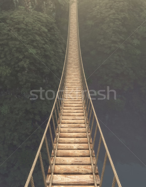 Rope bridge suspended  Stock photo © orla