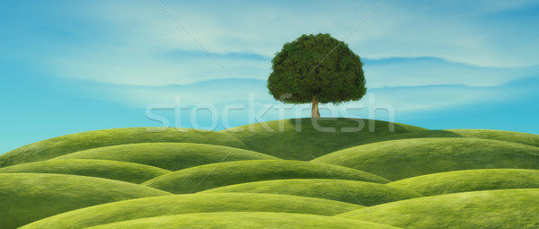A tree with green leaves Stock photo © orla