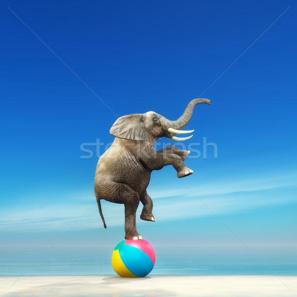 Imagine de stoc: Elefant · plaja · minge · 3d · face · ilustrare · plajă · natură