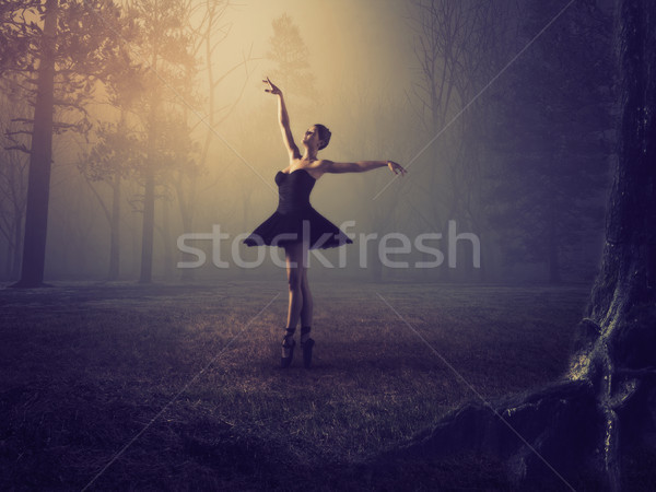 Ballerina with tutu in forest.  Stock photo © orla