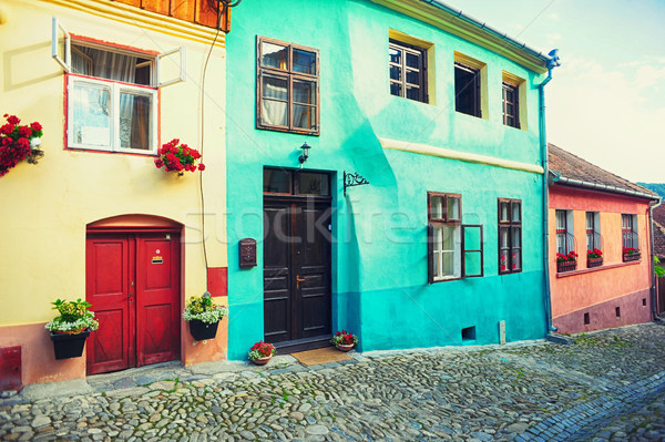 Old houses with flowers  Stock photo © orla