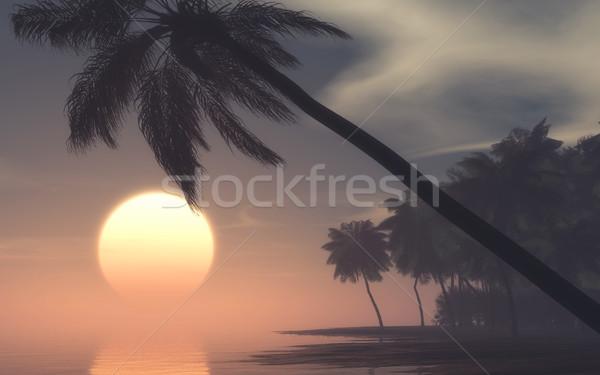 закат Тропический остров туманный утра 3d визуализации иллюстрация Сток-фото © orla