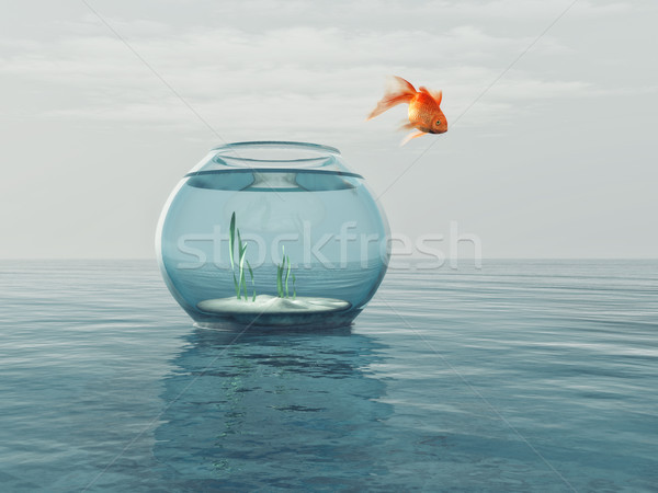 Goldfish in a bowl  Stock photo © orla
