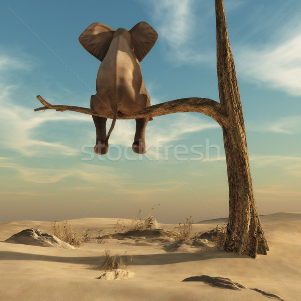 Elephant stands on thin branch of withered tree Stock photo © orla