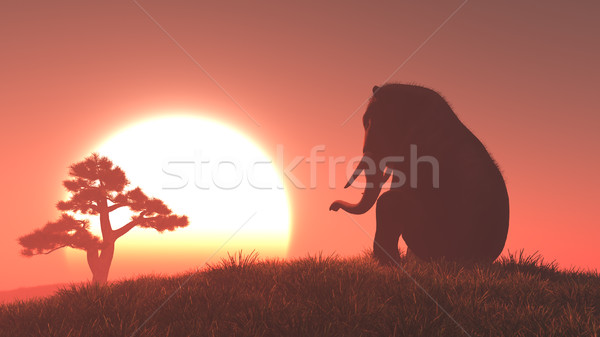 Silhouette of elephant and tree  Stock photo © orla
