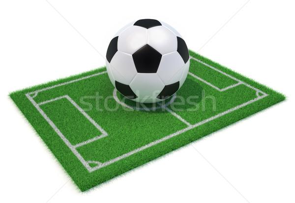 Futballpálya labda 3d render illusztráció futball fehér Stock fotó © orla