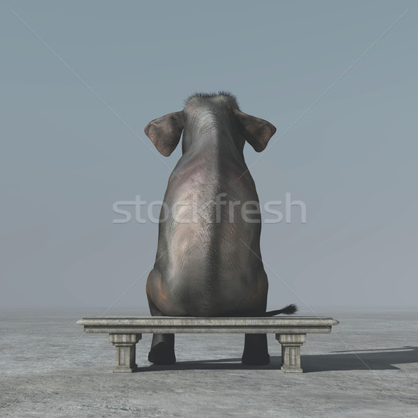 An elephant sitting on a bank. Stock photo © orla