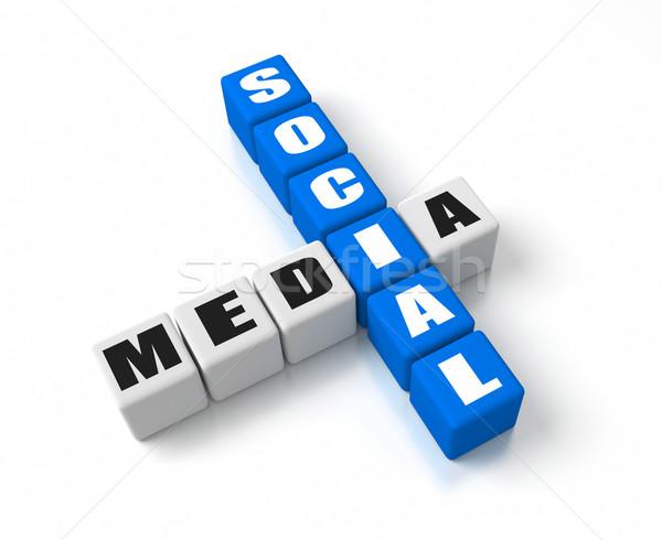Közösségi média üzlet fogalmak hálózat kék társasági Stock fotó © OutStyle