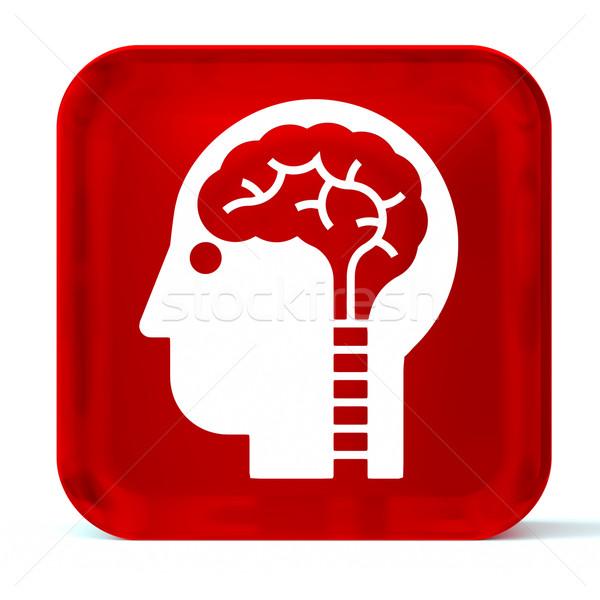 Neurología vidrio botón icono blanco Foto stock © OutStyle