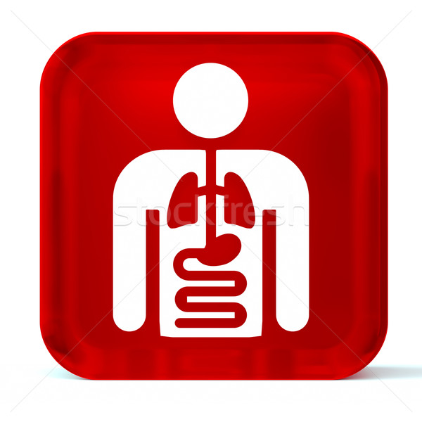 Interno medicina vidrio botón icono blanco Foto stock © OutStyle