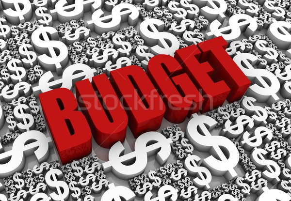 Budget Stock photo © OutStyle