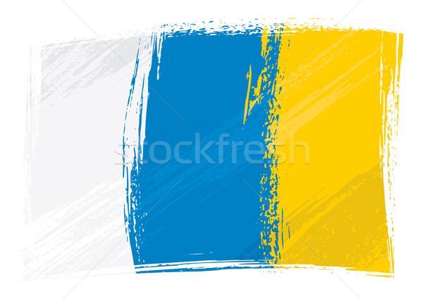 Grunge Canary Islands flag Stock photo © oxygen64