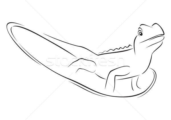 Reptile on sketch Stock photo © oxygen64