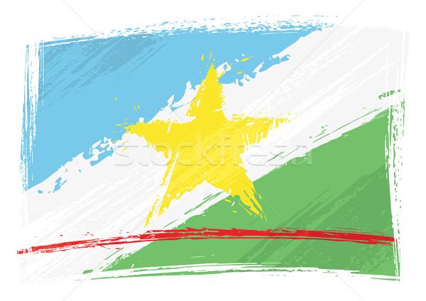 Grunge Roraima flag Stock photo © oxygen64