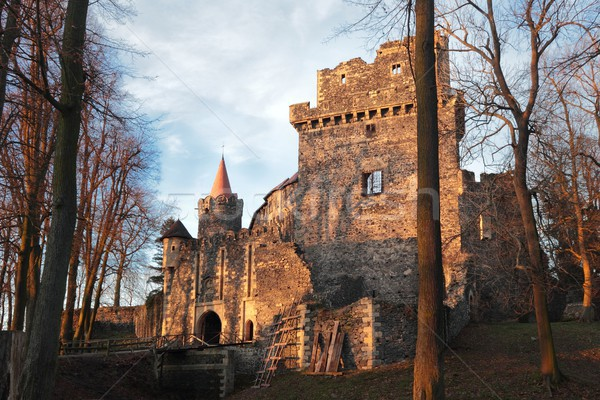 Pologne porte ruines vieux château bâtiment Photo stock © oxygen64