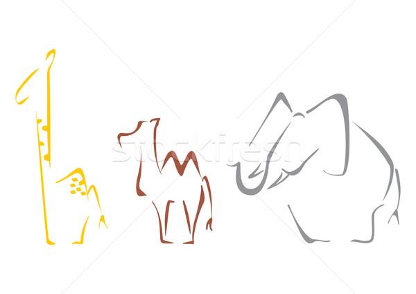 Safari dieren giraffe kameel olifant schets kunst Stockfoto © oxygen64