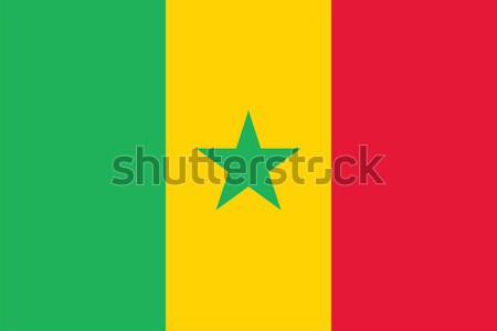 Sénégal pavillon vecteur Photo stock © oxygen64