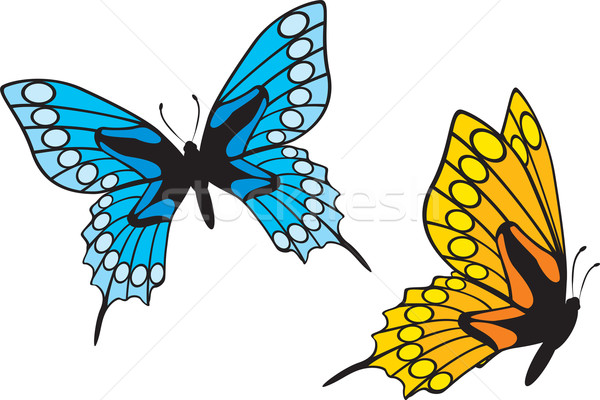 Butterflies Stock photo © oxygen64