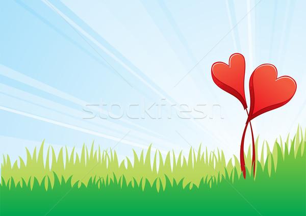Sevmek çiçekler iki kırmızı kalpler alan Stok fotoğraf © oxygen64
