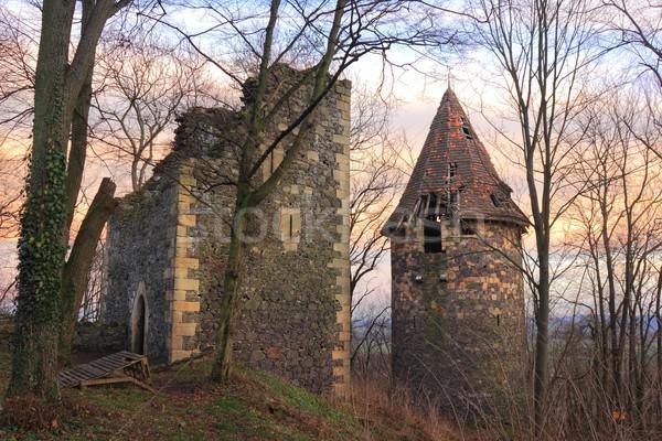 Ruines château Pologne deux bâtiment Photo stock © oxygen64