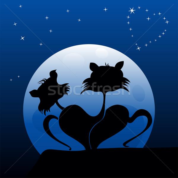 Kediler sevmek iki görmek gece Stok fotoğraf © oxygen64