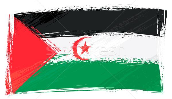Grunge westerse sahara vlag stijl Stockfoto © oxygen64