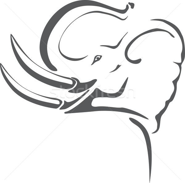 Elephant tattoo Stock photo © oxygen64