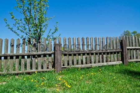 Starych ogrodzenia trawy niebo drewna Zdjęcia stock © pab_map