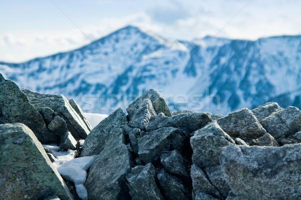 Berg winter landschap groene zonnige bomen Stockfoto © pab_map