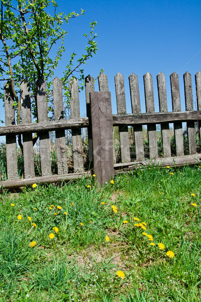Old wooden fence Stock photo © pab_map