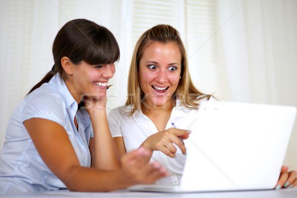 Stockfoto: Verwonderd · werknemer · vrouwen · lezing · laptop · scherm