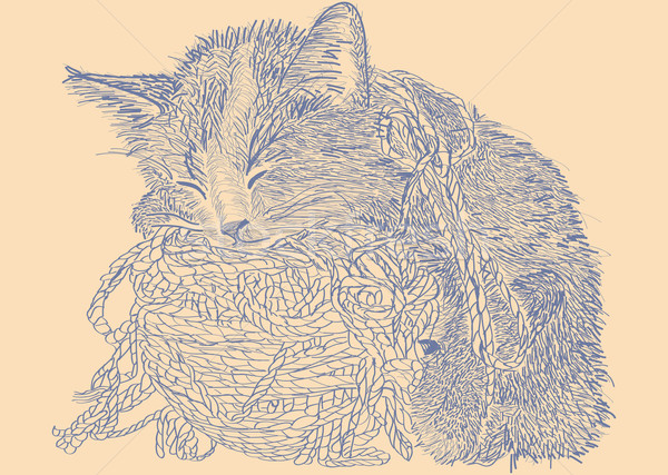Cat With Ball of Yarn Stock photo © padrinan