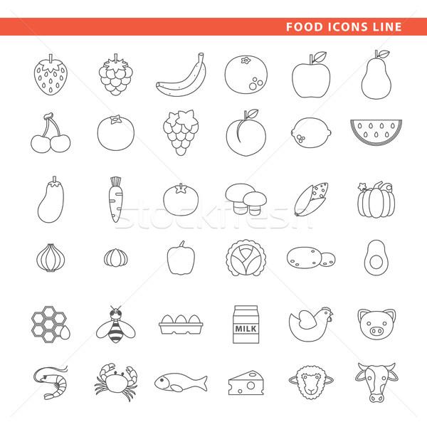 Food icons line. Stock photo © padrinan