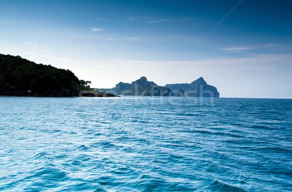 Ada deniz krabi su manzara okyanus Stok fotoğraf © Pakhnyushchyy