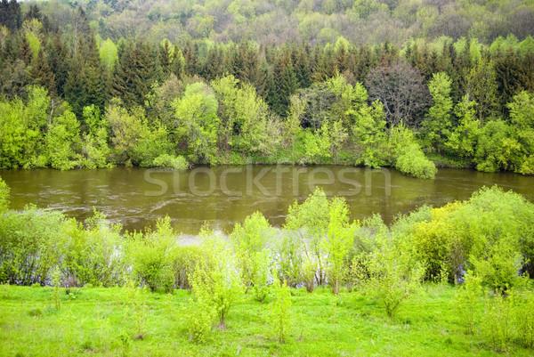 river Stock photo © Pakhnyushchyy