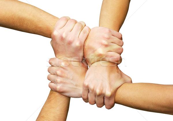 Kezek fehér csapatmunka barátság kéz hálózat Stock fotó © Pakhnyushchyy