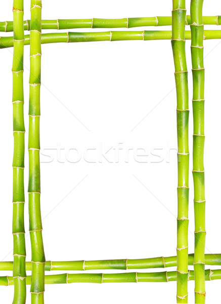 Photo stock: Bambou · cadre · herbe · bois · feuille · jardin