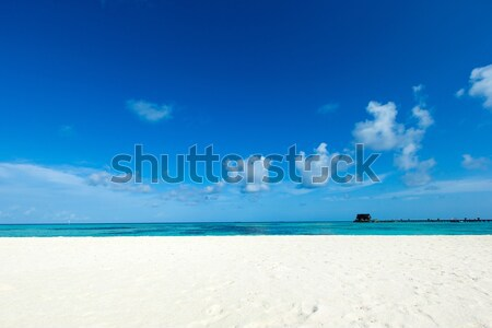 beach  Stock photo © Pakhnyushchyy