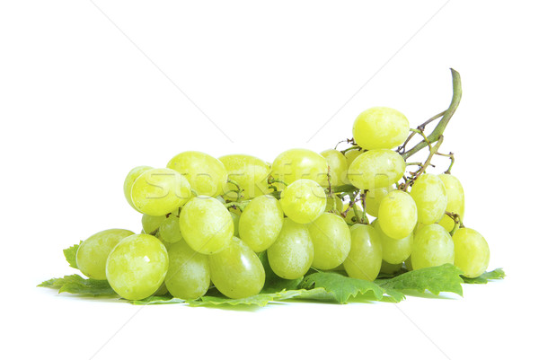grape  Stock photo © Pakhnyushchyy