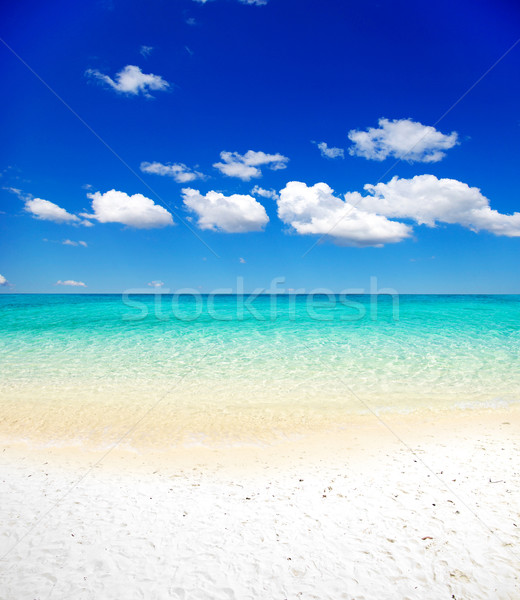 морем красивой пляж тропические воды фон Сток-фото © Pakhnyushchyy