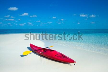 Mar blanco playa tropical poco palmeras azul Foto stock © Pakhnyushchyy