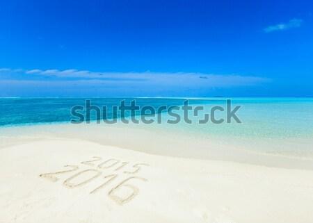 Spiaggia spiaggia tropicale pochi palme blu cielo Foto d'archivio © Pakhnyushchyy