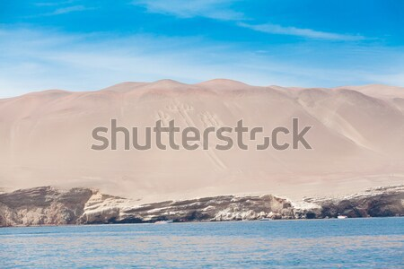 América del sur playa océano viaje grupo Foto stock © Pakhnyushchyy