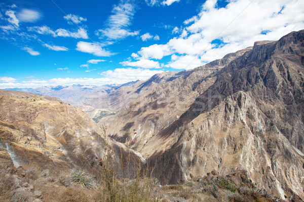 Landschap hemel berg reizen panorama grond Stockfoto © Pakhnyushchyy