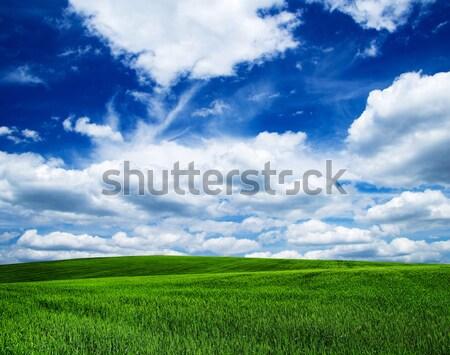 небе Blue Sky облака лет синий Сток-фото © Pakhnyushchyy