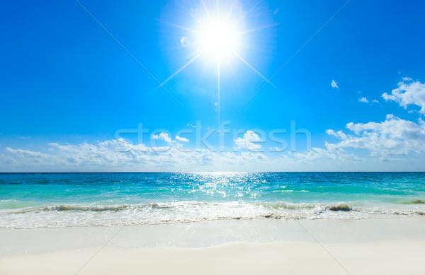 тропический пляж пальмами синий воды пейзаж Сток-фото © Pakhnyushchyy